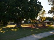 newtown-park-4
