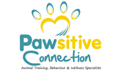 Pawsitive Connection