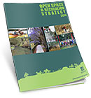 Open Space and Recreation Strategy