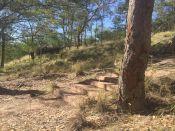 castle-hill-4